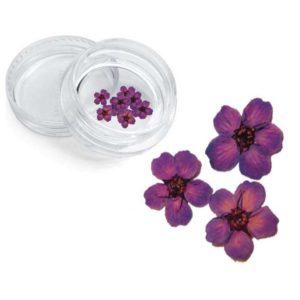 Severina, Сухоцвет для дизайна ногтей F7, фиолетовый